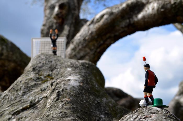 Im Angesicht des Baumes